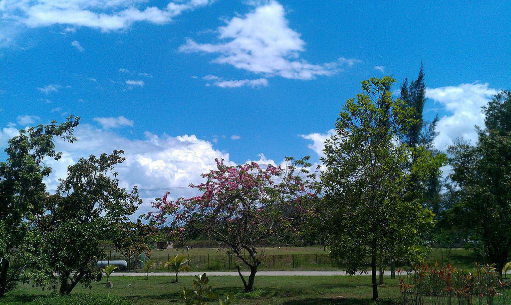 La Belleza de un día soleado en Villa Clara