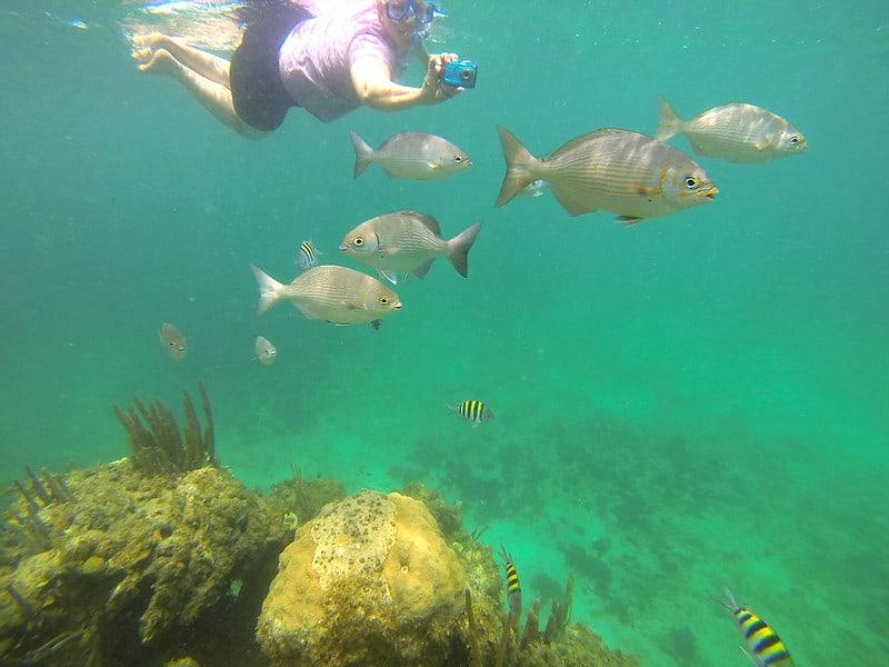Snorkeling en Playa Jibacoa