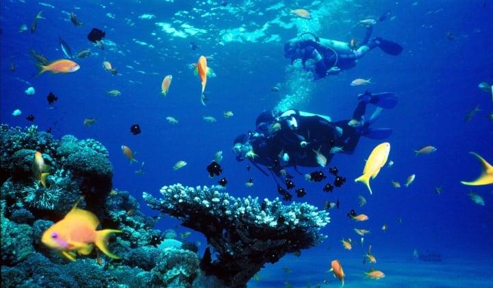 Cuba tiene mucho que ofrecer para los amantes del buceo (kobatours)