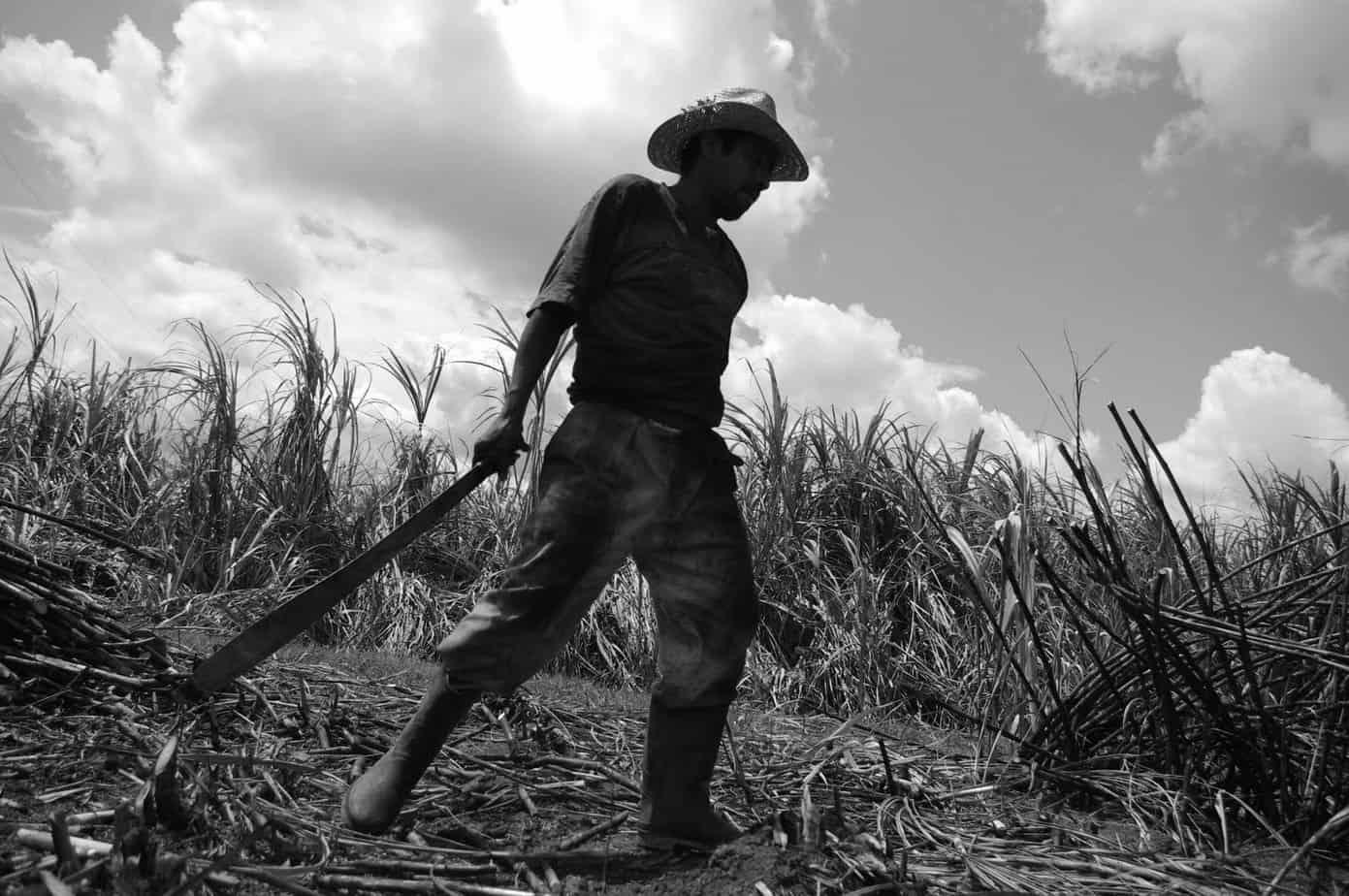 Cuba dice tener el primer campesino millonario