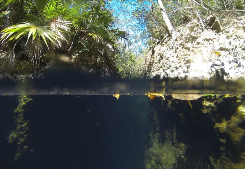 Cueva de los Peces, en la Ciénaga de Zapata