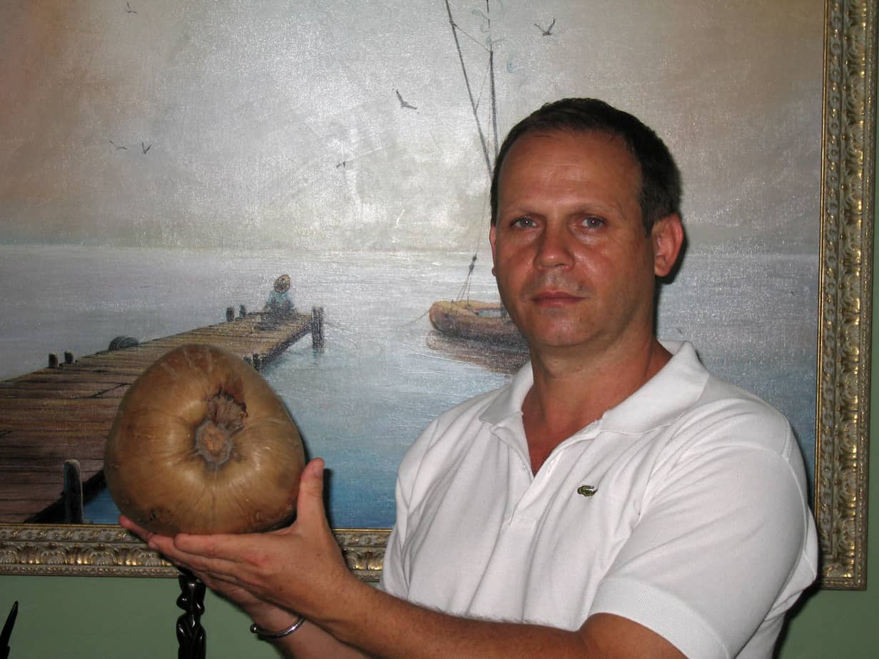 Esteban Machado: pinturas, cocos y símbolos de fe