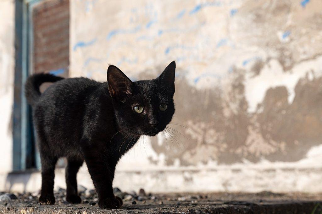 supersticiones cubanas