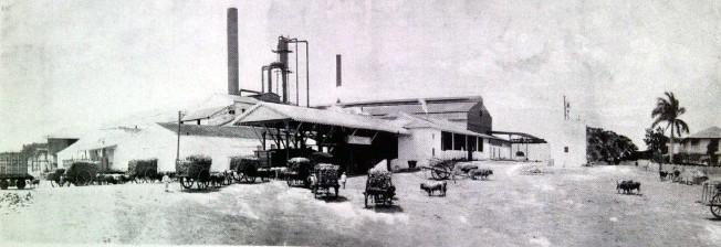El central Santa Lutgarda en 1913
