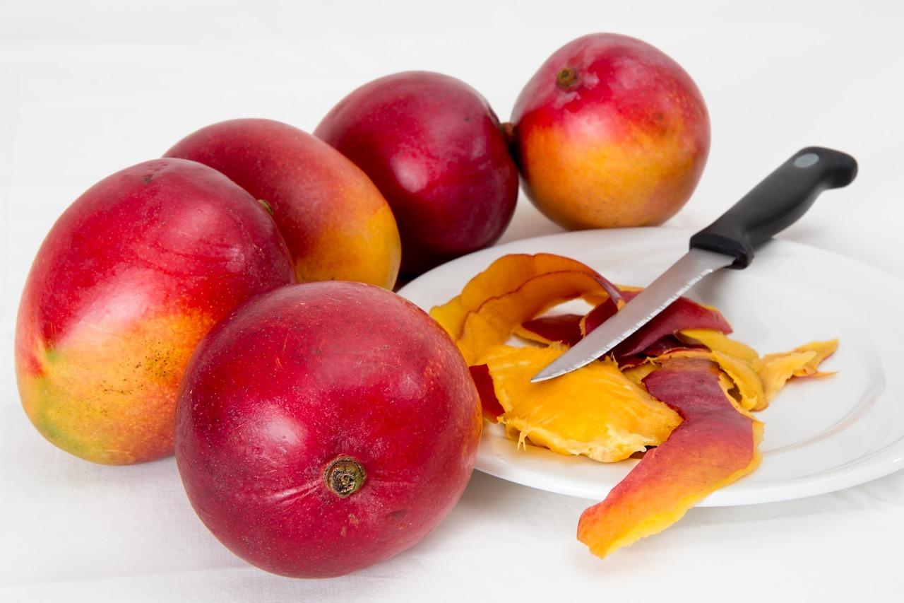 Los primeros mangos de Cuba se sembraron en La Habana