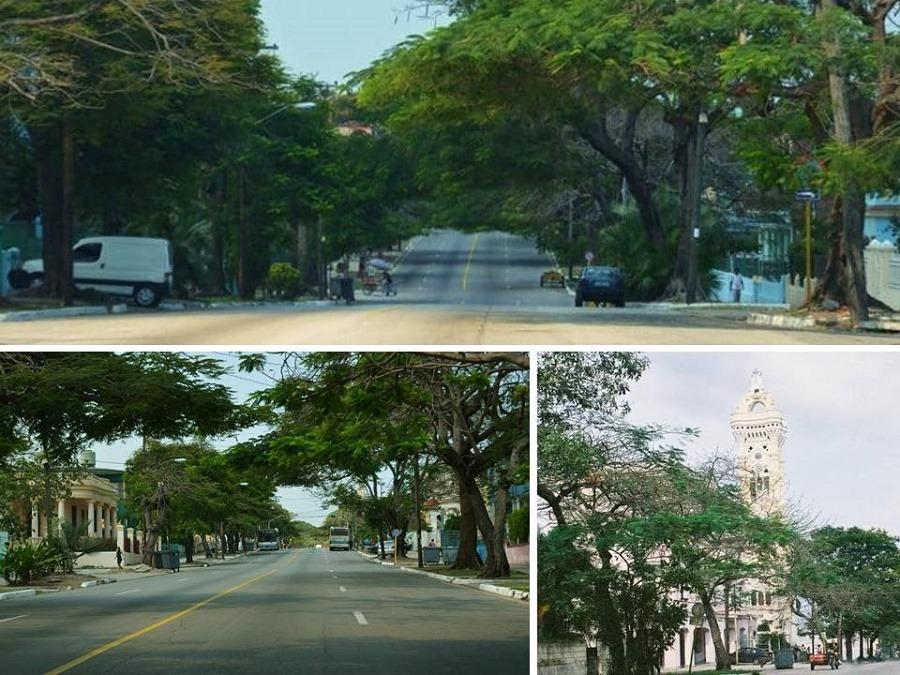 Avenida Santa Catalina