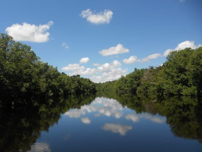 Río Hatiguanico: el sistema fluvial más importante de toda la Península de Zapata