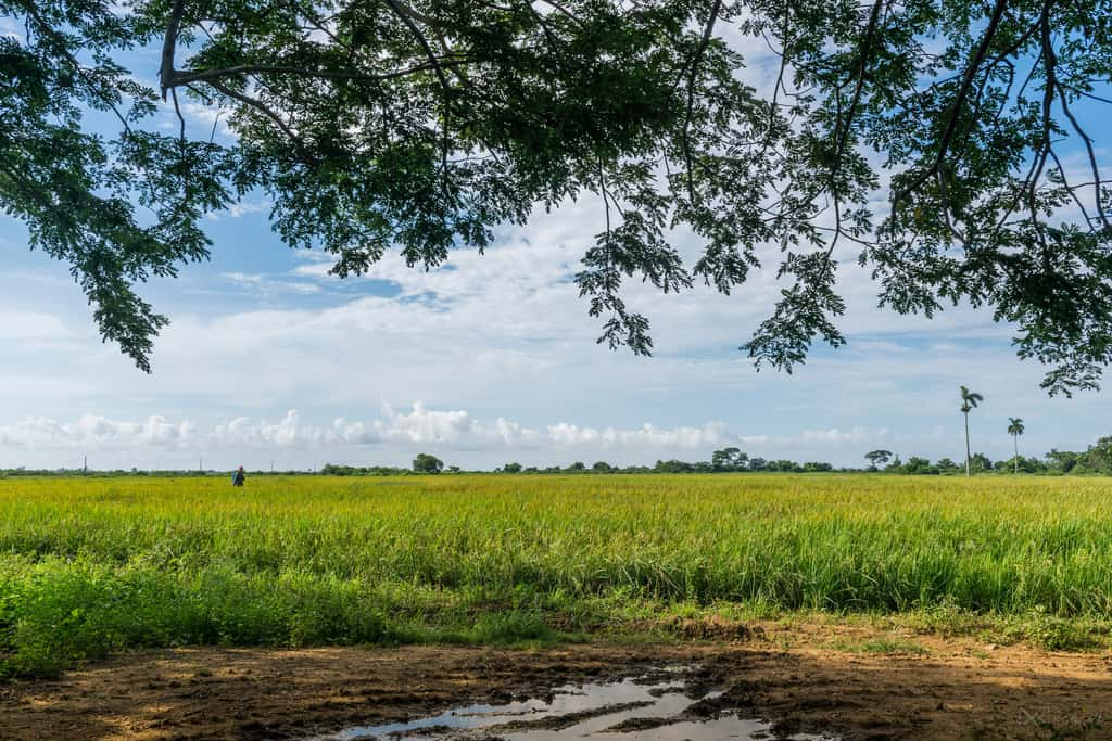 Macurijes, el pueblito cubano que es tan pobre que ni siquiera aparece en los mapas (+ Fotos)