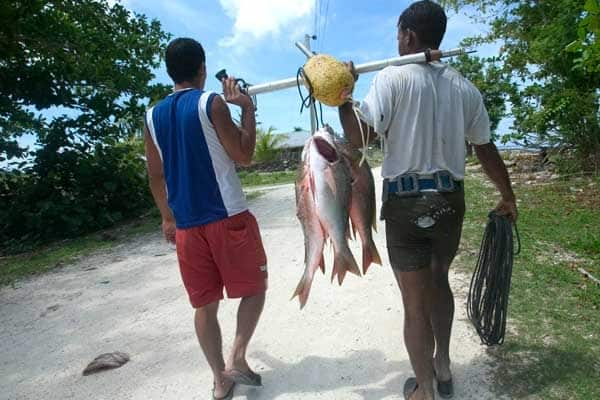 Cocodrilo, la pequeña comunidad cubana que está considerada un paraíso ecologista