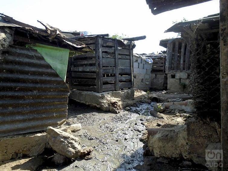 El pequeño pueblo de Pinar del Río que se ha convertido en un paraíso pestilente donde criar cerdos
