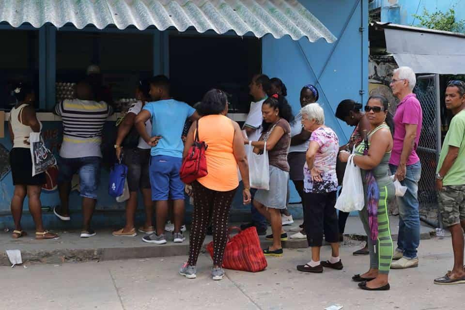 ¡Llegaron los huevos!, el grito que hacer formar rápidamente las colas en Cuba