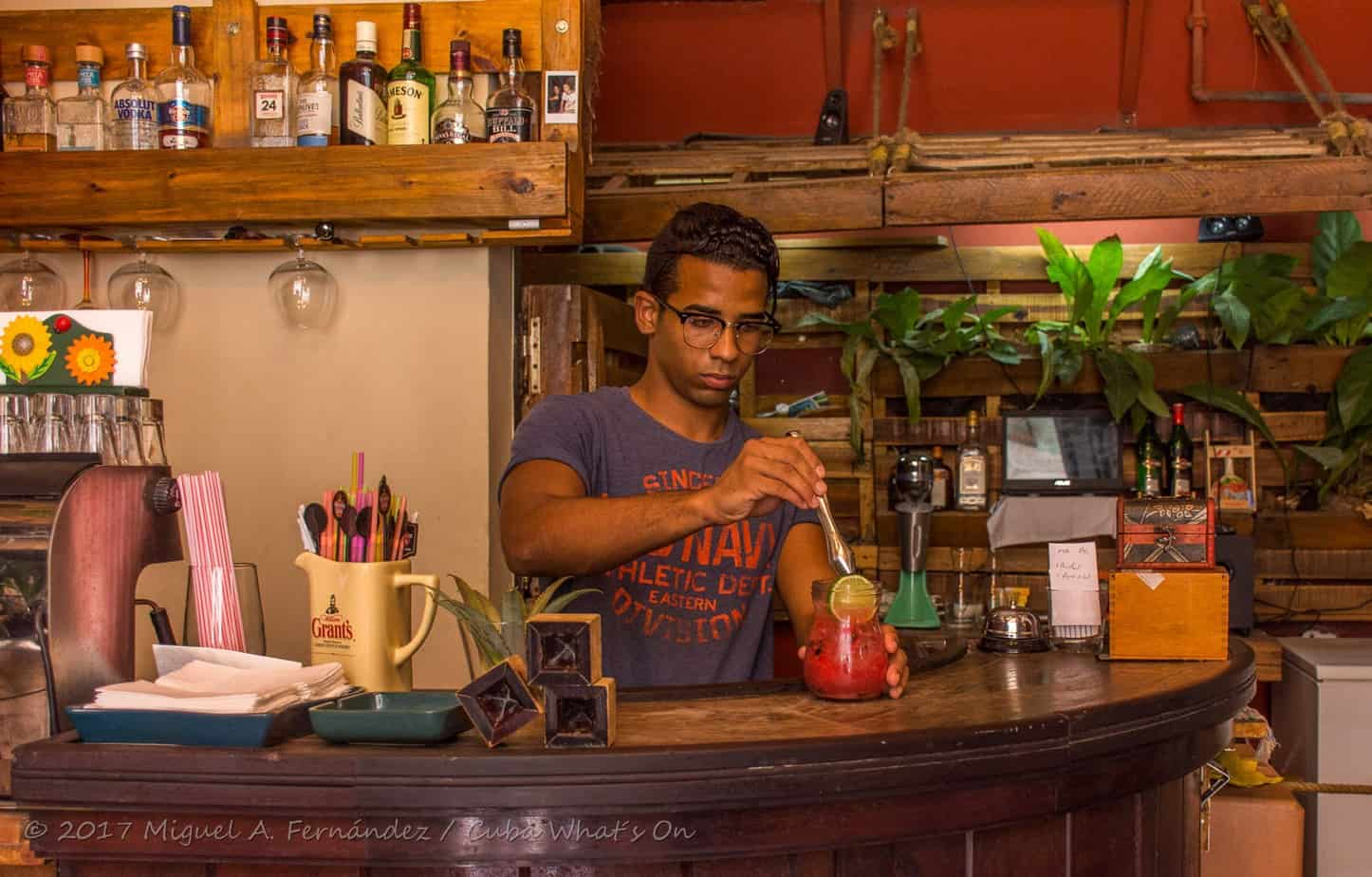 """Oasis Nelva, un pequeño restaurante en La Habana vieja que ofrece comida orgánica """"gourmet"""""""