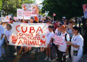 Marcha en pro de los derechos de los animales