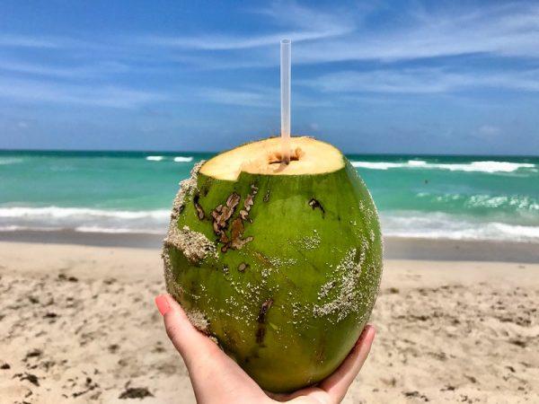 Agua de coco en la Playa