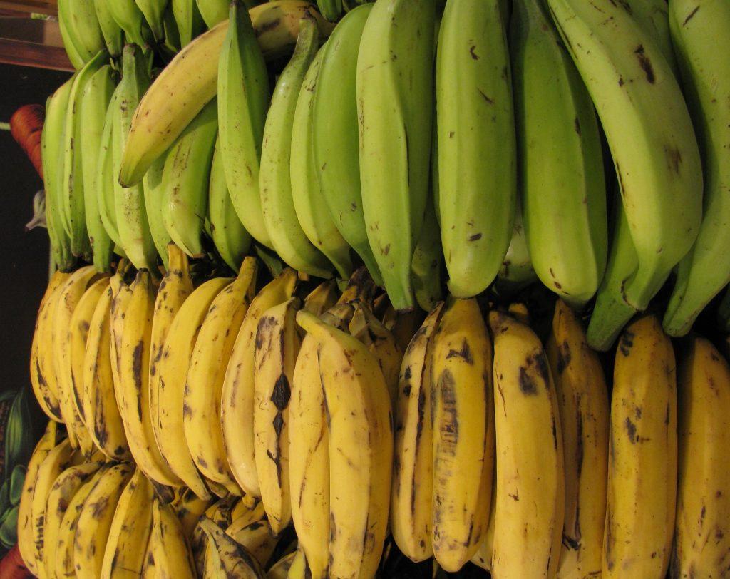 Plátano cubano
