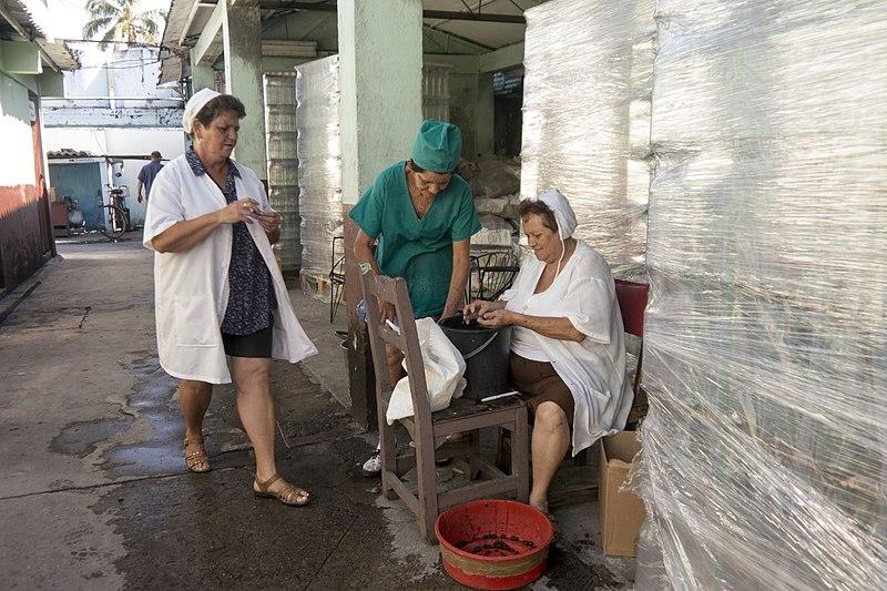 Trabajadoras de la fábrica de Guayabita del Pinar