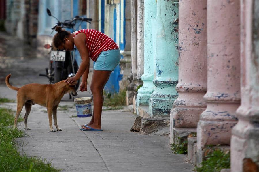 Una mujer alimenta a un perro callejero en La Habana